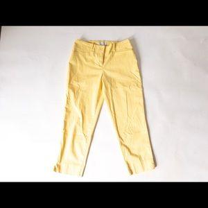 🐝 Talbots Pant Petite Classic Crop SZ 2P